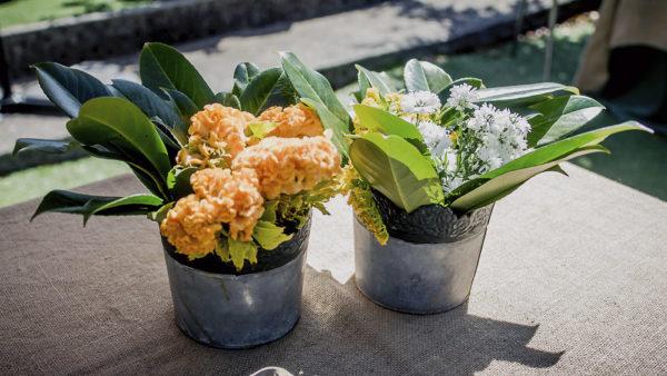 CAtering y decoración con plantas frescas